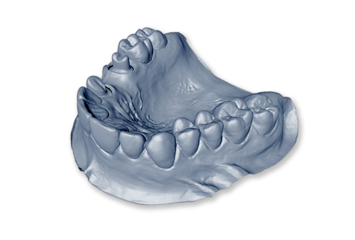 Oceanic Dental Laboratory   Services